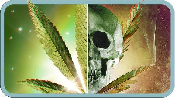 Halb Cannabis-Blatt, halb Totenschädel.