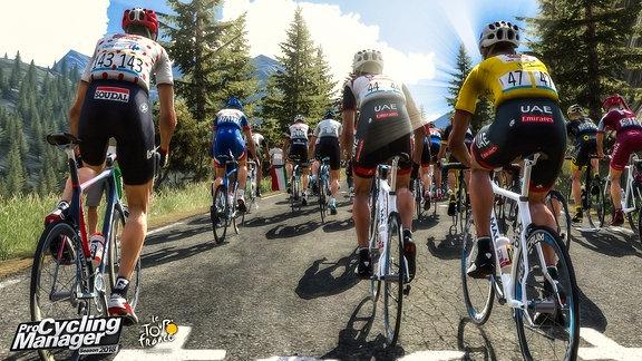 Eine Gruppe Rennrad-Fahrer, die sich eine Bergetappe hochquälen.