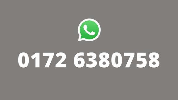 Grafische Darstellung der WhatsApp-Nummer von MDR SPUTNIK.