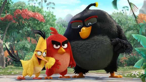 Angry Birds (Foto aus dem Film)