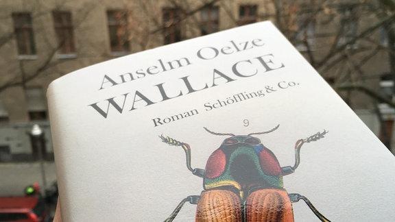 """Anselm Oelzes Buch """"Wallace"""" vor einer Häuserwand."""