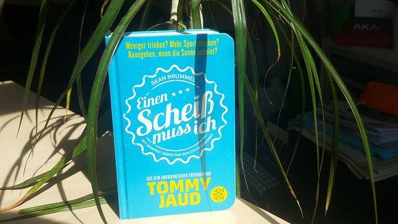 """Der Buchdeckel in Blau mit der Aufschrift """"Einen Scheiß muss ich""""."""
