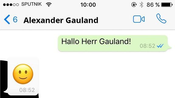 Alexander Gauland antwortet mit Emojis auf unsere Fragen