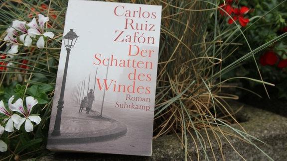 """Das Buch """"Sommerbuch: Der Schatten des Windes"""" von Carlos Ruiz Zafon wurde vor einer Pflanze."""