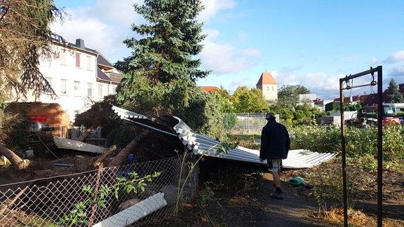 Sturmschäden in einem Garten. Fotografiert von Nicole in Magdeburg.