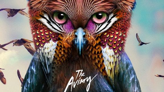 """Das Galantis """"The Aviary"""" Cover mit einer bunten Fantasieeule und Vögeln"""