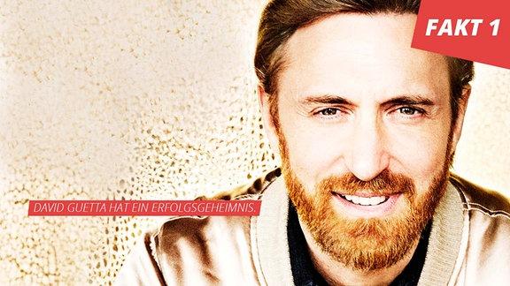 David Guetta, Portrait