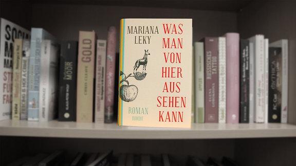 """""""Was man von hier aus sehen kann"""", Roman von Mariana Leky"""
