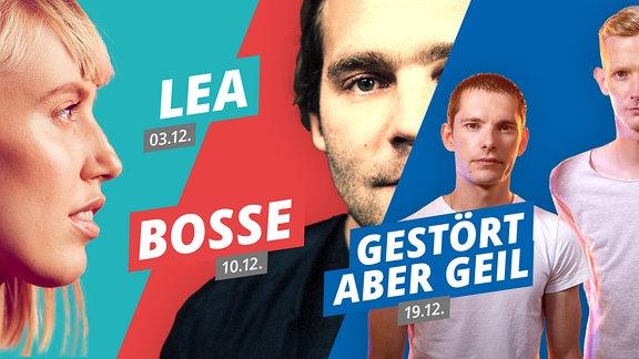 Collage Radiokonzerte | Lea | Bosse | Gestört Aber Geil