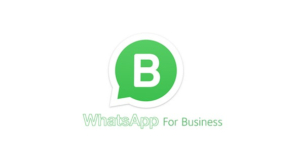 WhatsApp For Business (Logo)