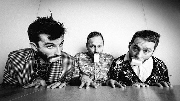 Die drei Mitglieder der österreichischen Band Bulbul.