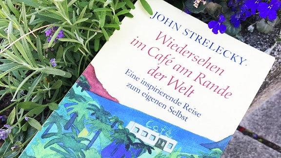 Ein Buch liegt neben Sommerblumen